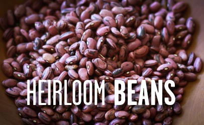 Rancho Gordo bean recipes