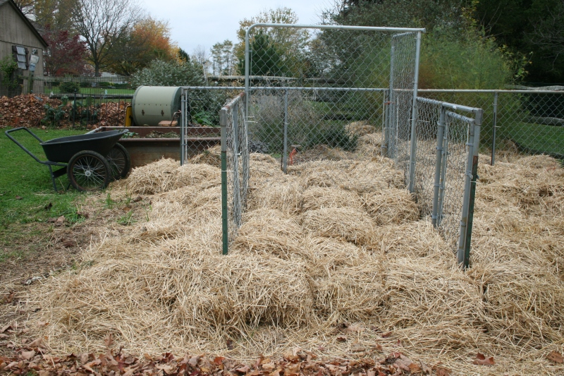 Straw protects my garden.