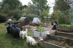 Bag garden waste