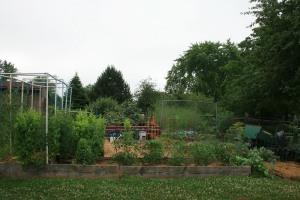 June 2020 Garden