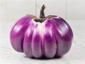 Prospera eggplant